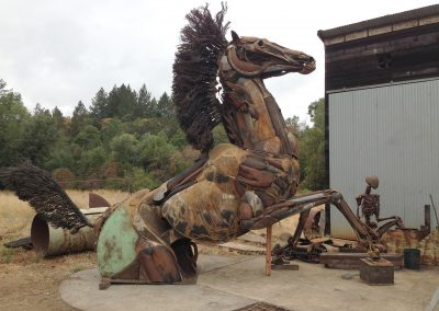 horse right side